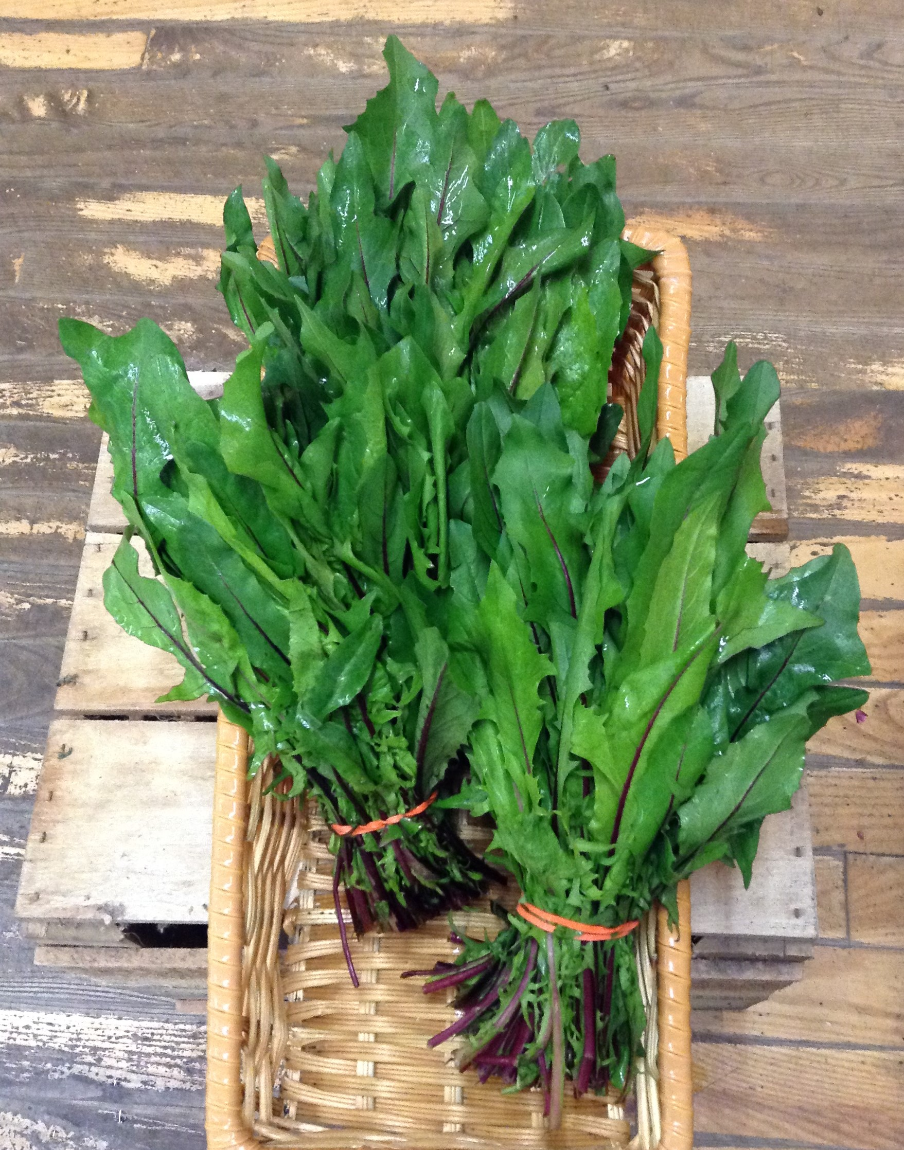 LOCAL Organic Dandelion Greens