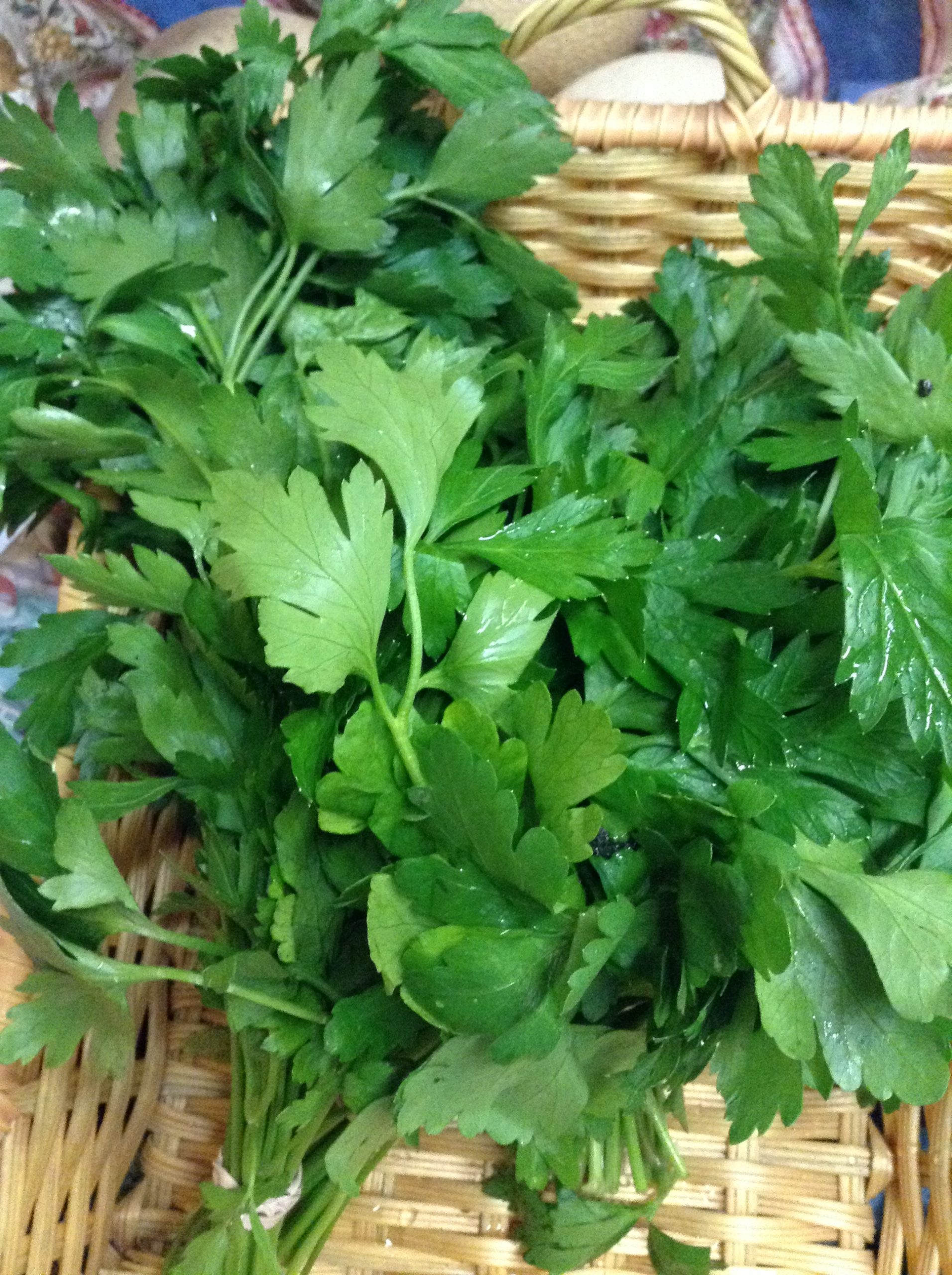 LOCAL Organic Flat-Leaf Parsley