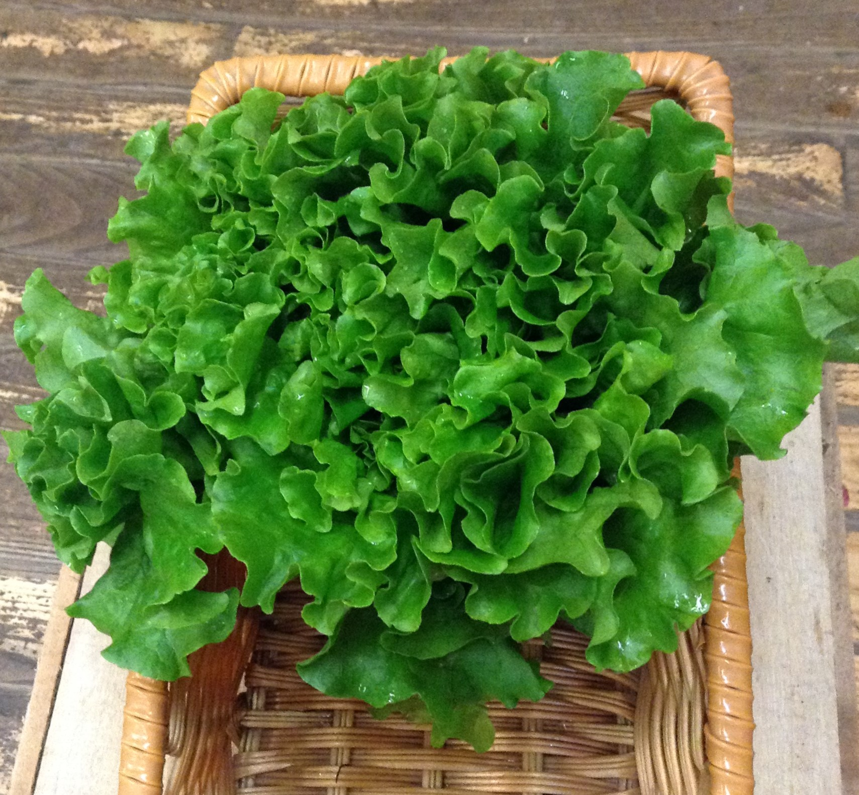 LOCAL Organic Green Leaf Lettuce