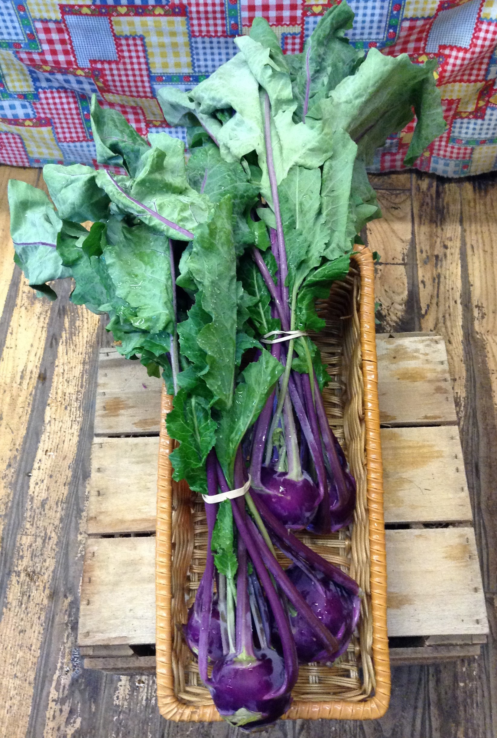 LOCAL Organic Kohlrabi