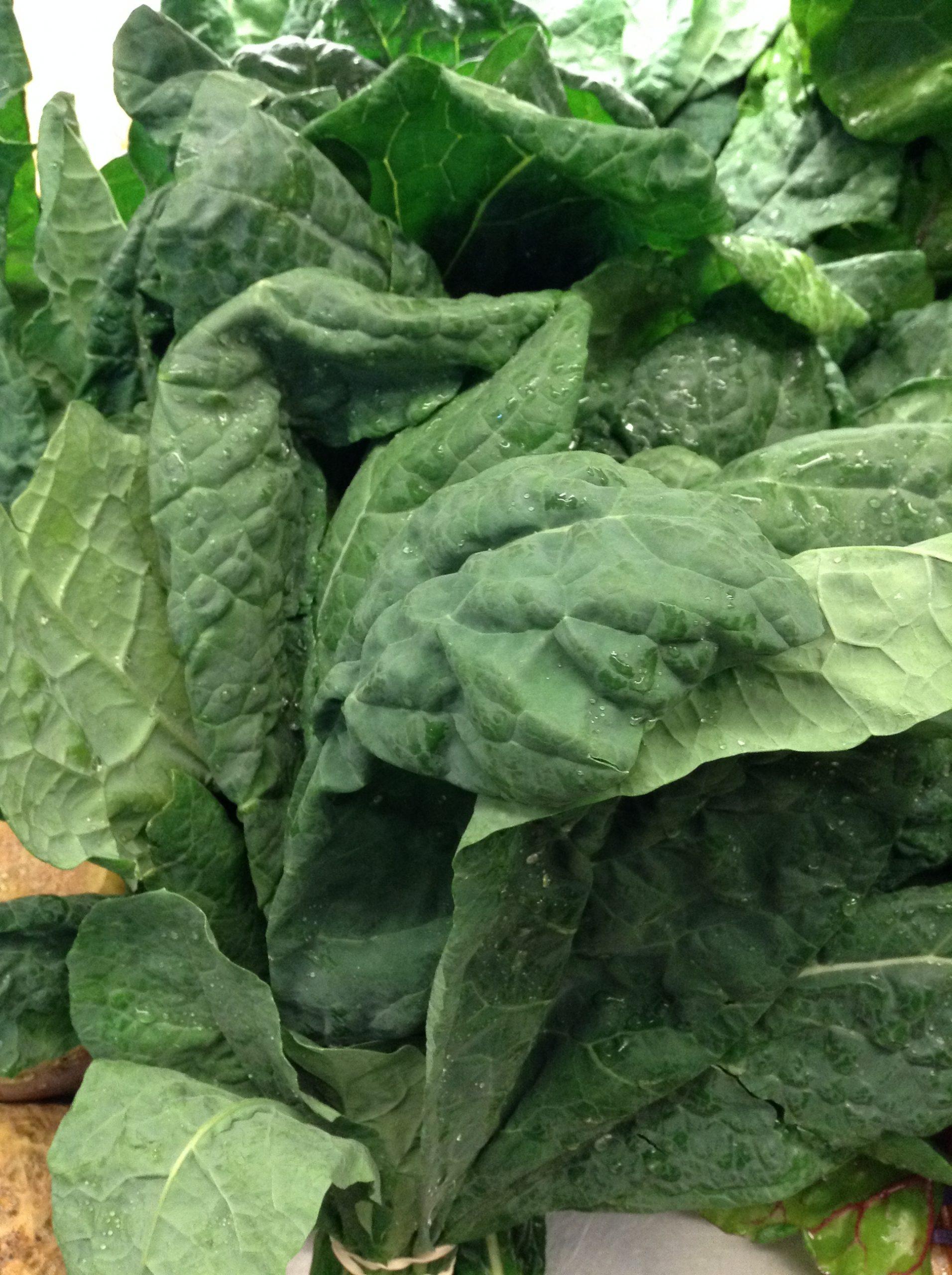LOCAL Organic Lacinato Kale