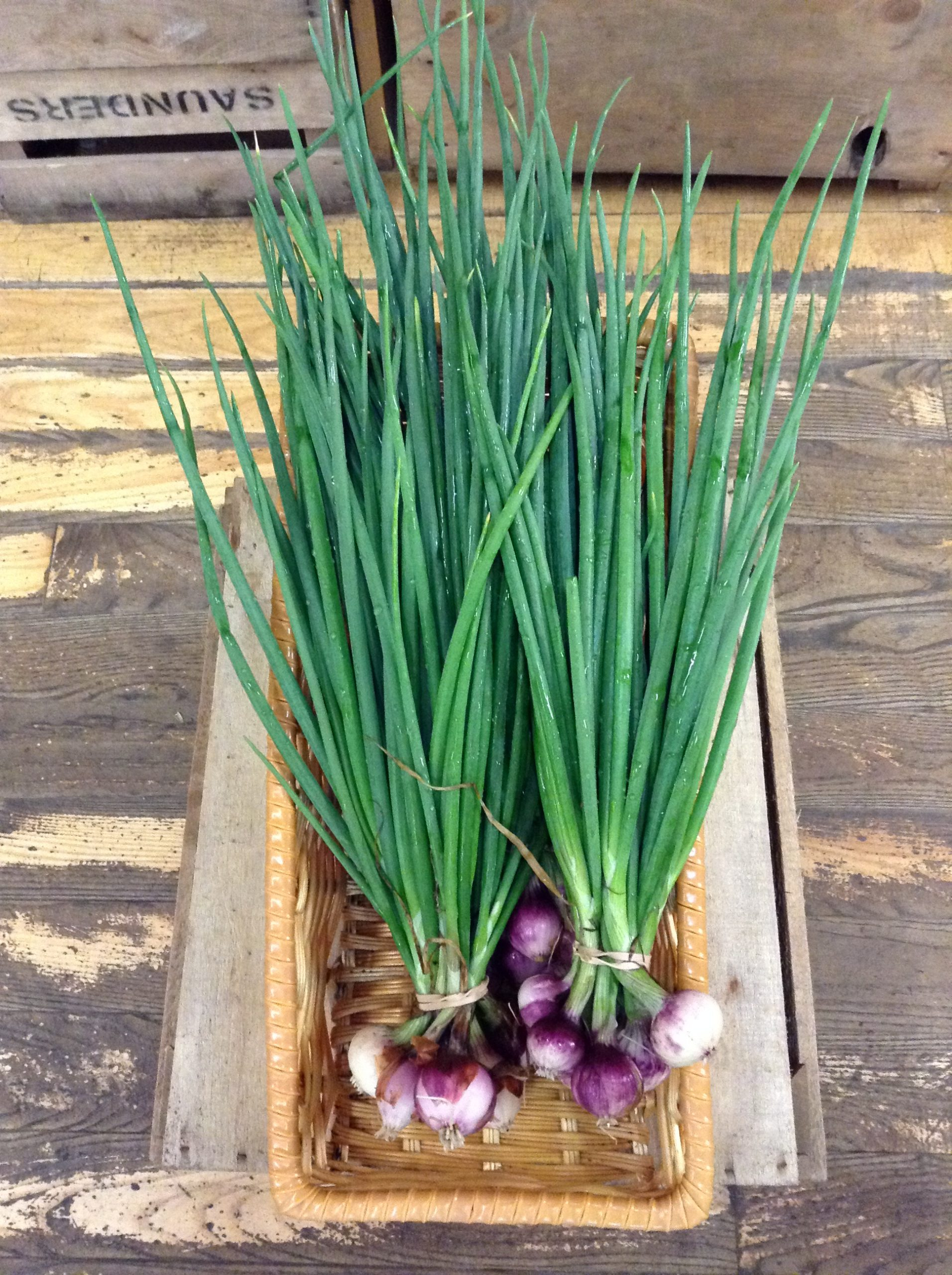 LOCAL Spring Onion Bunches!