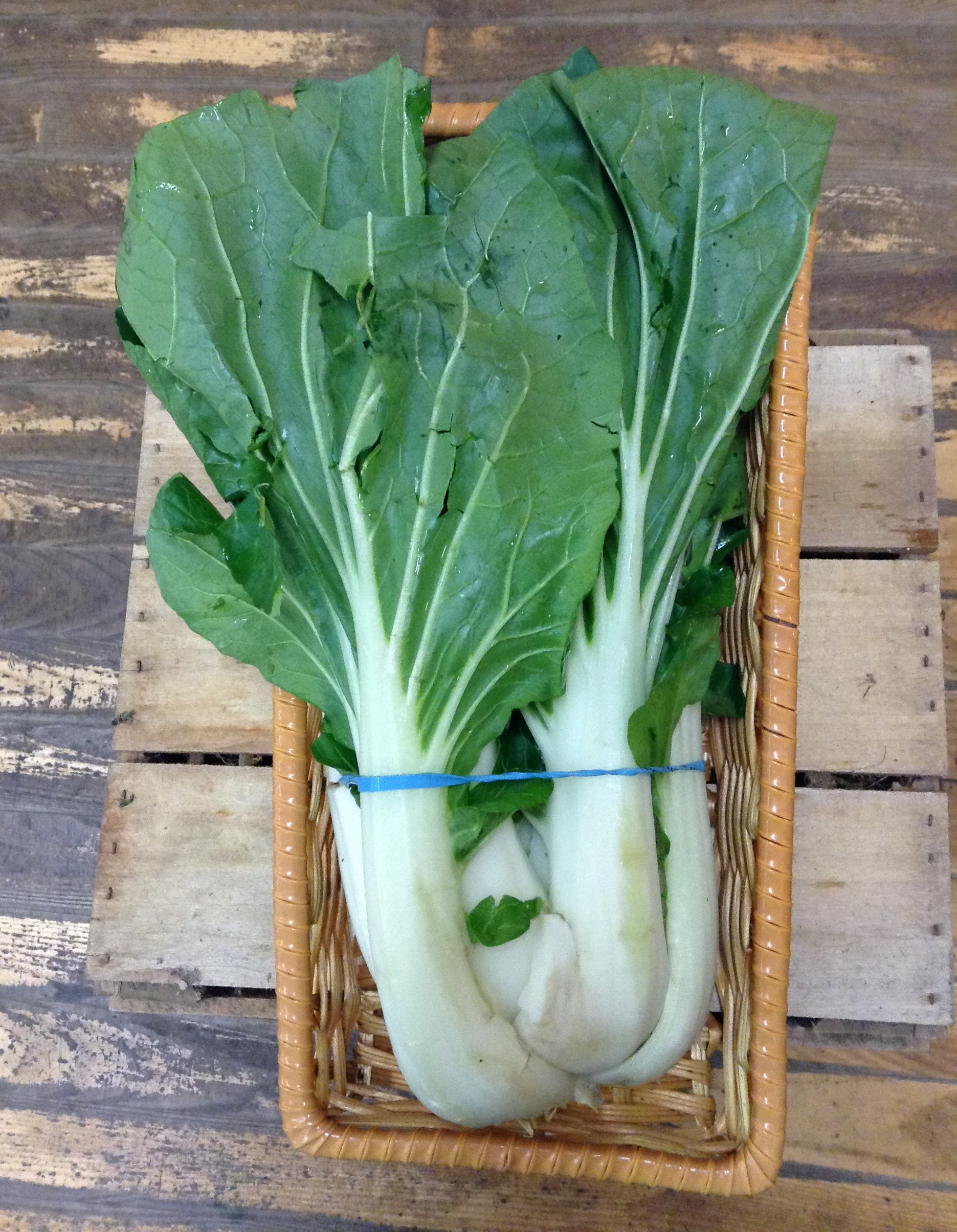 LOCAL Pac Choi, organically-grown