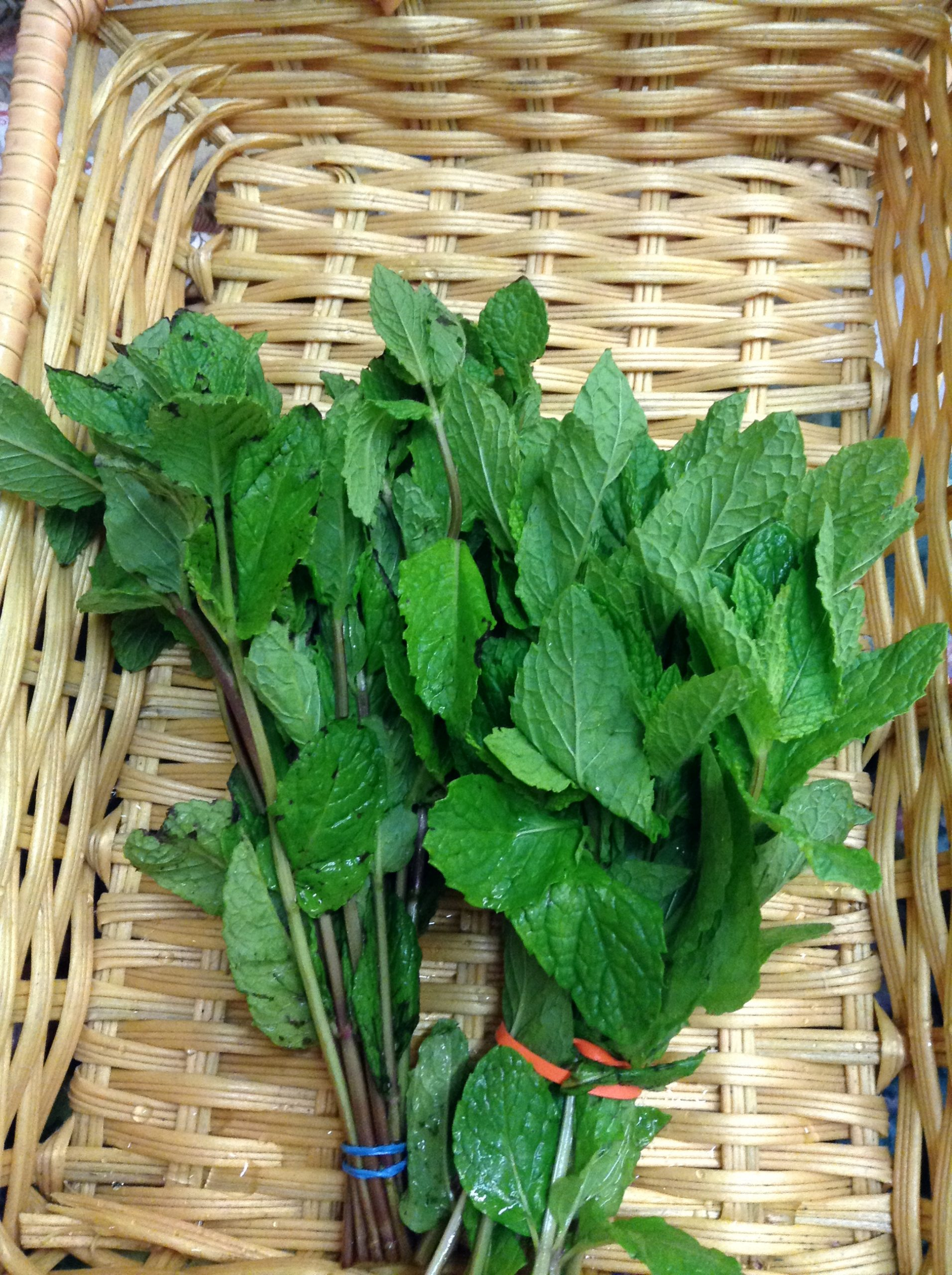 LOCAL Organic Spearmint